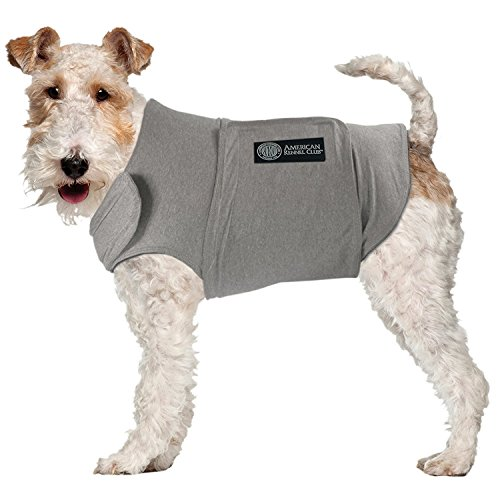 anxiety vest for dog